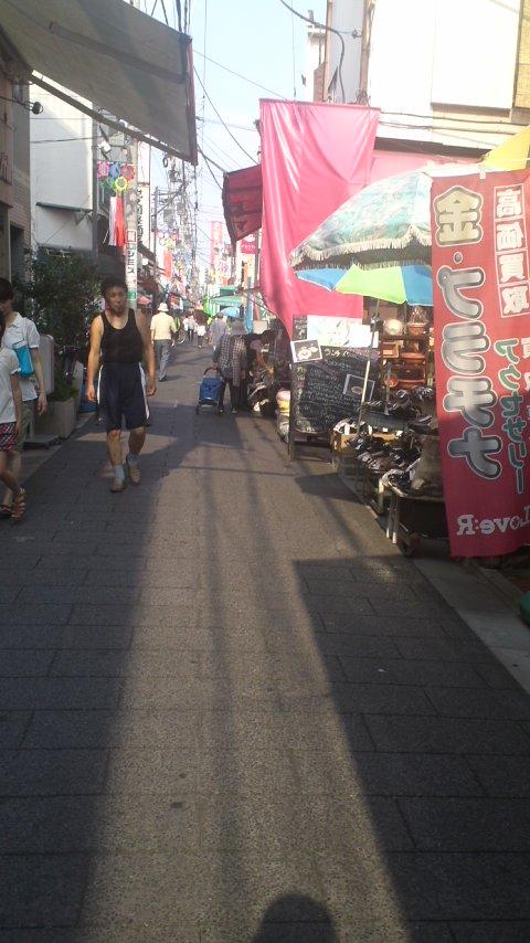 猛暑の散歩